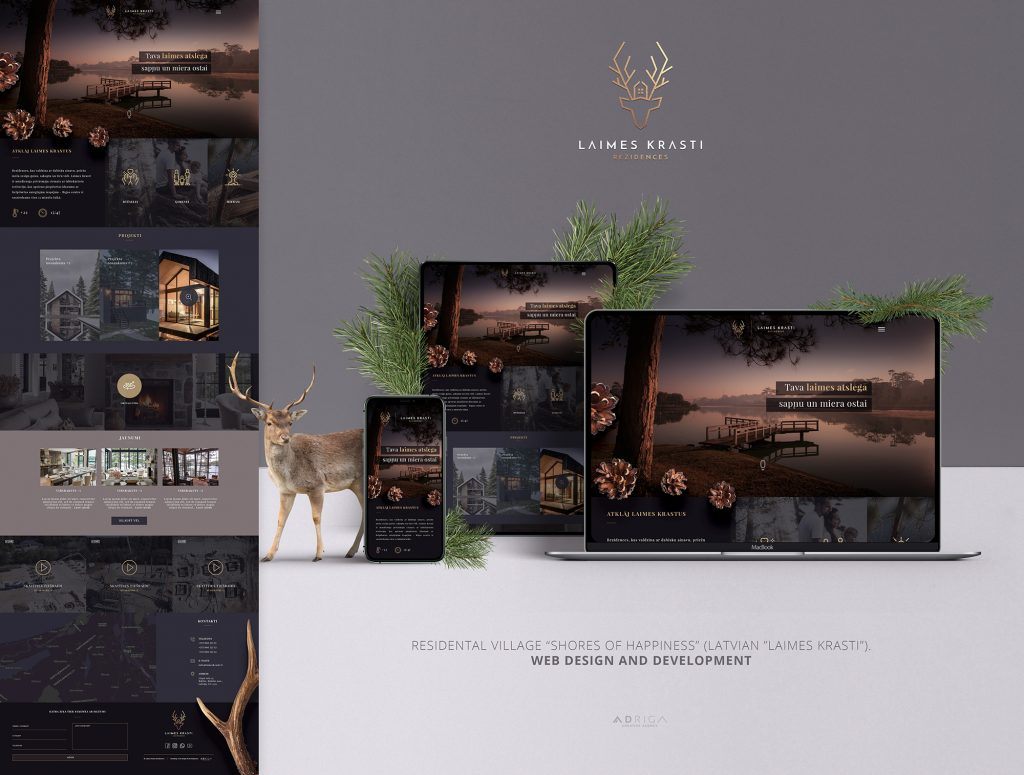 web dizains